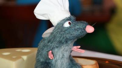 Something In Your Pantry Has Rat Hair In It. Just Letting You Know!
